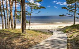 Wooden floor leading to the sand beach of the Baltic Sea royalty free stock photos