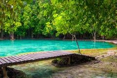 Wooden flooring around the emerald pool in Krabi. Thailand Stock Photos
