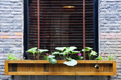 Wooden flower box in window. An old French residential structure with flower box outside its window Stock Photo