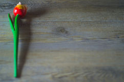 Wooden flower. Red tulip in natural morning light. Over a rustic table Royalty Free Stock Photo