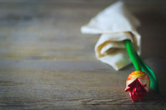 Wooden flower. Red tulip in white towel. Peaceful natural light over a rustic table Stock Photos