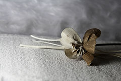 Wooden flower Stock Images