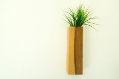Wooden flowerpot hung on the white wall. Wooden flowerpot with green grass hung on the wall Royalty Free Stock Photo