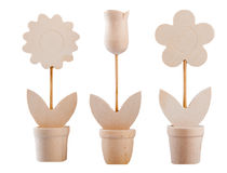 Wooden flowers. Set of three different models of flowers made wood Stock Photos