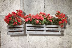 Wooden flowers boxes against an old brick wall - Home sweet home. Written on wooden box royalty free stock images