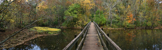 Free Wooden Foot Bridge Royalty Free Stock Image - 9395076