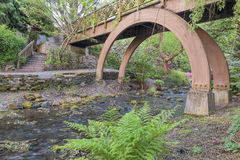 Wooden Foot Bridge at Crystal Springs Garden Stock Photography