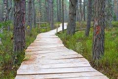 Wooden foot bridge Stock Photo