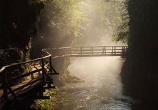 Wooden Foot Bridge In Misty Morning Royalty Free Stock Photography