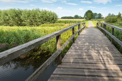 Wooden foot bridge over a small creek Royalty Free Stock Image