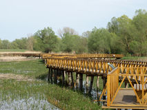 Wooden foot bridge. Set in a nature park in Slavonia Royalty Free Stock Images