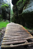 Wooden foot path Royalty Free Stock Images