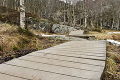 Wooden foot path in rural landscape Stock Photos