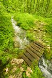 Wooden footbridge Royalty Free Stock Photos