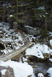 Wooden footbridge Royalty Free Stock Photo