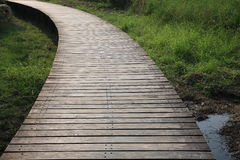 Wooden footbridge across wetlands. Wooden footbridge across natural wetlands Royalty Free Stock Photography