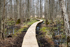 wooden footbridge in the bog Stock Photos
