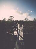 Wooden footbridge in the bog Royalty Free Stock Photos