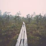 Wooden footbridge in the bog. Vintage. Royalty Free Stock Photo