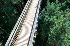 Wooden Footbridge Crossing High Up Over A Forest Royalty Free Stock Photo