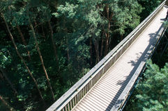 Wooden footbridge crossing high up over a forest Royalty Free Stock Photos