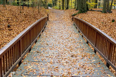 Wooden footbridge in fall Stock Images