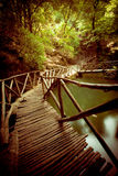 Wooden Footbridge Royalty Free Stock Photography