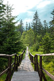 Wooden footbridge with handrails Royalty Free Stock Photos