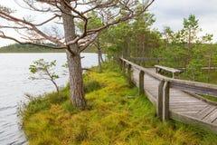 Wooden footbridge at a lake Stock Photo