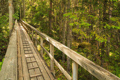 Wooden footbridge leading to a forest Stock Photo
