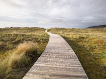 Wooden footbridge in a meadow Royalty Free Stock Image