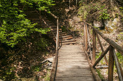 Wooden footbridge in mountain Stock Image