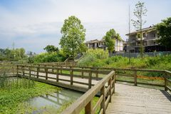 Wooden footbridge over the lake near countryside dwelling buildings. At sunny summer noon,Chengdu,China stock image