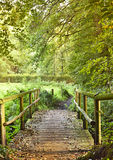 Wooden footbridge over a little creek Royalty Free Stock Image