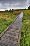 Wooden footbridge in the rain Royalty Free Stock Image
