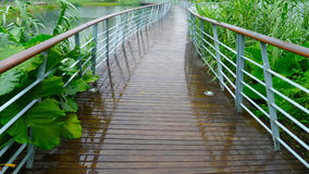 Wooden footbridge Stock Image