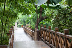 Wooden footbridge throught garden Stock Photo