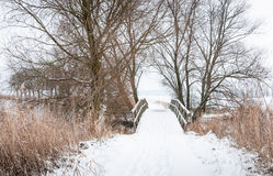 Wooden footbridge in winter Royalty Free Stock Photo
