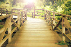 Wooden footbridge in a wood Stock Photography