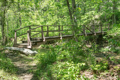 A Wooden Footbridge in the Woods Royalty Free Stock Photo