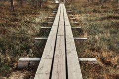 Wooden footpath on a beautiful autumn meadow in forest. Stock Image
