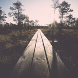 Wooden footpath on the bog Stock Photo