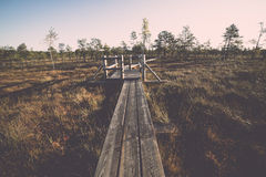 Wooden footpath on the bog Royalty Free Stock Photography