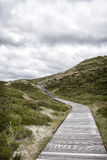 Wooden footpath through dunes Royalty Free Stock Photography