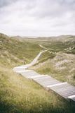 Wooden footpath through dunes Stock Photos