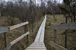 Wooden footpath in a nordic landscape Royalty Free Stock Image