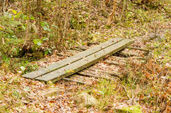 Wooden footpath Royalty Free Stock Image