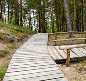 Wooden footpath and resting point in the forest , Latvia Royalty Free Stock Image
