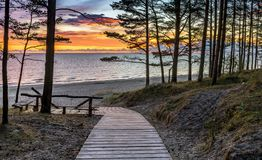Wooden footpath and resting point in the pine forest , Latvia Stock Images