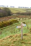 Wooden footpath sign. New wooden Public Bridleway sign to Moles Chamber on Exmoor National Park, southwest England royalty free stock photos